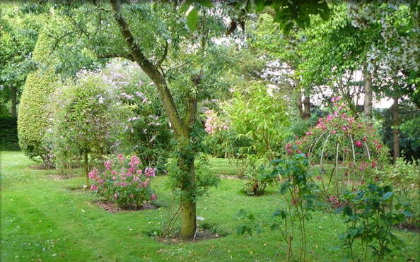 The rose garden for Jardin remarquable