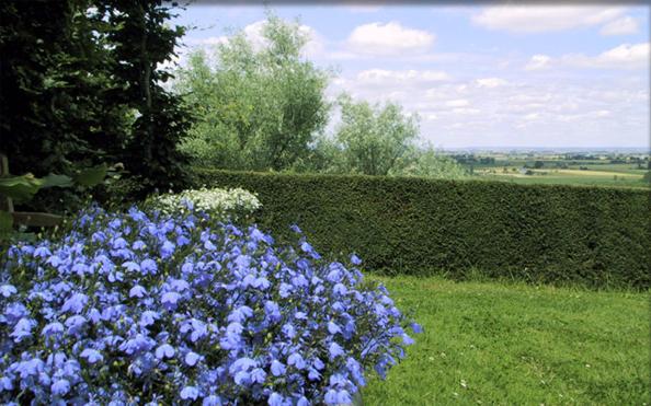 visite des jardins de ballon le mans sarthe jardin remarquable normandie pays de la loire. Black Bedroom Furniture Sets. Home Design Ideas