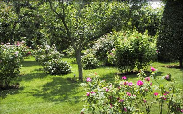 Roseraie le mans sarthe jardin remarquable pays de la loire for Jardins remarquables ile de france